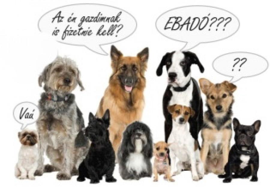 Kutyatartók figyelem, eb adót kell majd fizetni!