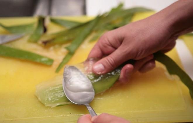 Készíts házilag Aloe-gélt