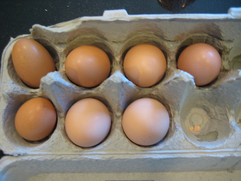 Müller Cecília tanácsa, hogy hogyan fertőtlenítsük a tojásokat