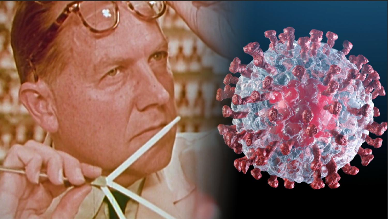 Ezzel a módszerrel nyerheti vissza a szaglását, aki a vírusból kigyógyult